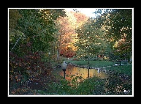 Fairyland by Jon Montgomery