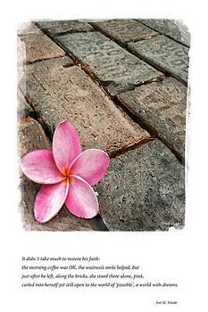 Faith on the Street by Cynthia Vickers - Jose M Tirado