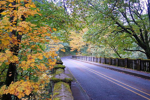 Fall - Road in Oregon by Vicki Coover
