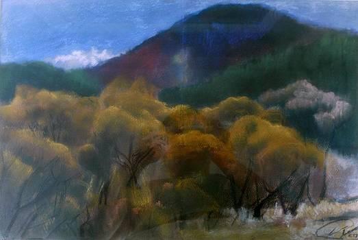 Fall 11 by Vaidos Mihai