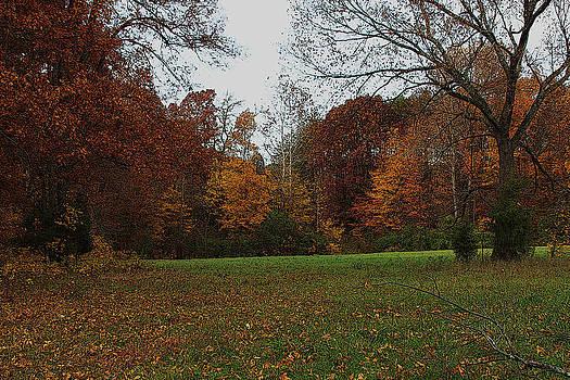 Fall Across The Lawn  by Bob Whitt