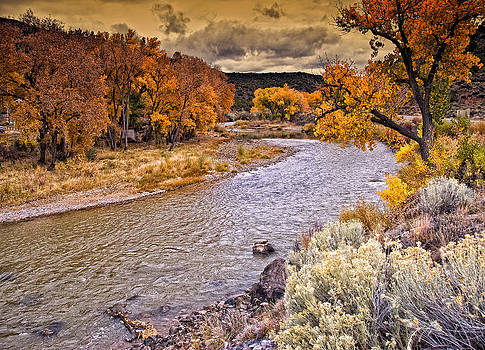 Fall along the Rio Grande by Beverly Hanson