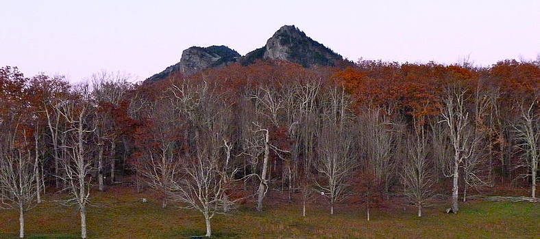 Fall at Grandfather Mountain  by Teresa Grace Mock