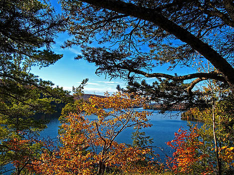 Chantal PhotoPix - Fall Autumn Colors - Meech Lake under Blue Skies framed by Pine Branches and Yellow Leaf Trees
