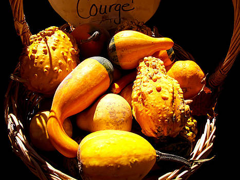 Chantal PhotoPix - Fall Autumn Colours - Multishaped Gourds with Warts in a Wicker Basket - Thanksgiving Holiday Season