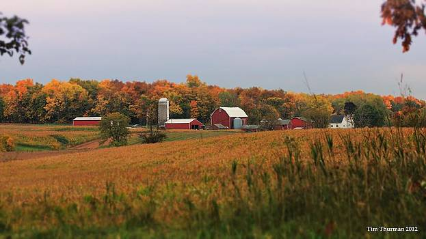 Fall Barn by Timothy Thurman