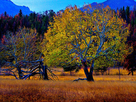 Fall Colors 2 by Kenneth Eis