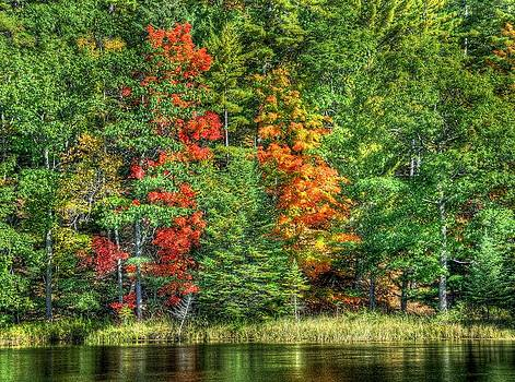 Fall Colors 2 by Kirk Stanley