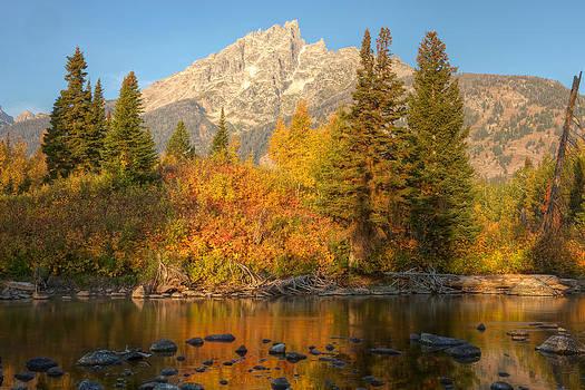 Fall colors near Jenny Lake by Johan Elzenga