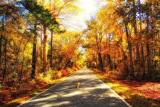 Fall Drive by Scott Childress