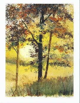 Fall Foliage by Wendy Cunico