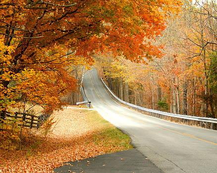 Fall in Kentucky by Sylvia Hart
