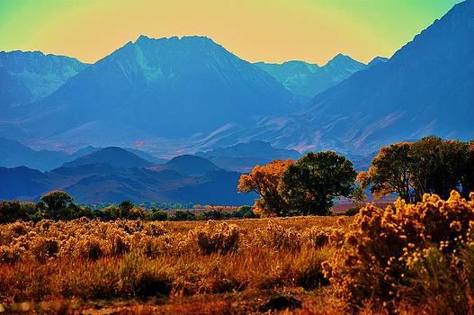 Fall in the Eastern Sierra 1 by Helen Carson