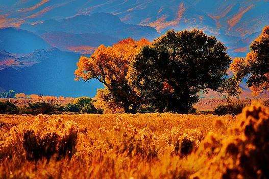 Fall in the Eastern Sierras 2 by Helen Carson