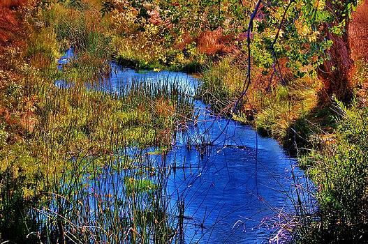 Fall in the Eastern Sierras 4 by Helen Carson