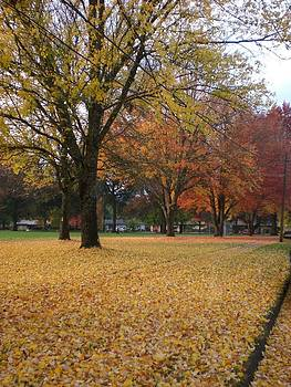 Fall in the park by Absolute Photography