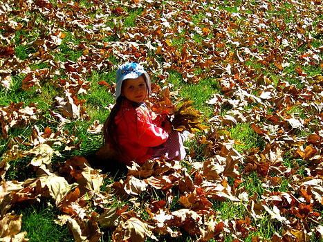 Fall is Fun by Catherine Natalia  Roche