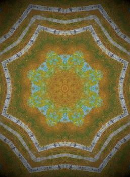 Fall kaleidoscope 1 by Heather  Hubb