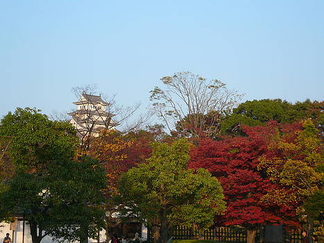Fall Leaves in Himeji by Chris Wolf