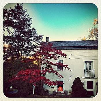 #fall #pumpkin #earlybird by Robyn Montella