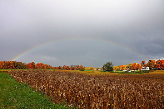 Fall Rainbow by Kevin Schrader