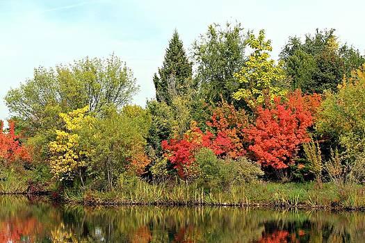 Fall Reflections in Idaho by Jo Sheehan