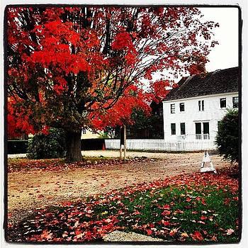 #fall #strawberybanke by Megan Mcnutt