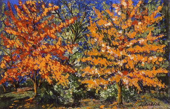 Fall Trees by Susan  Brasch