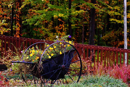Fall Wagon by Kevin Schrader