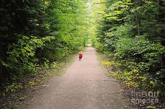 Elaine Mikkelstrup - Fall Walk