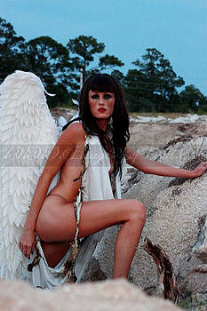 Fallen Angel II by ThomASInA Jackson