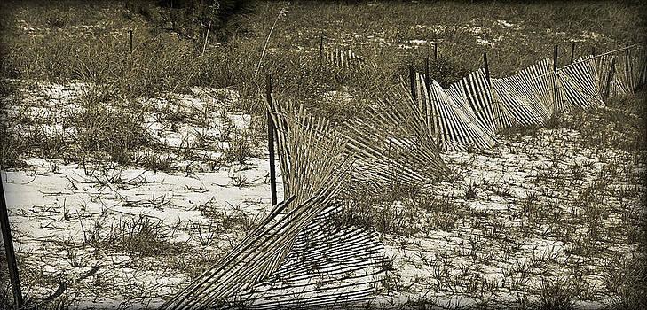 Falling Dune Fence by Susan Leggett