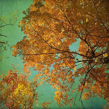Falling in Love by Sharon Kalstek-Coty