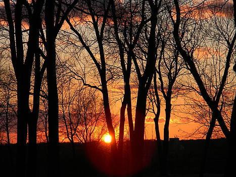 Falling Sun  by Billie sue  Crownover
