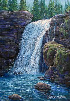 Falls at Twilight  by Tanja Ware