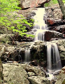 Marty Koch - Falls