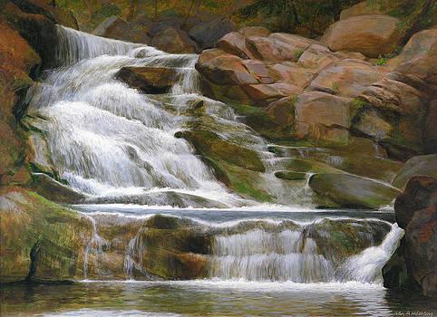 Falls Of Doodletown Creek by Glen Heberling