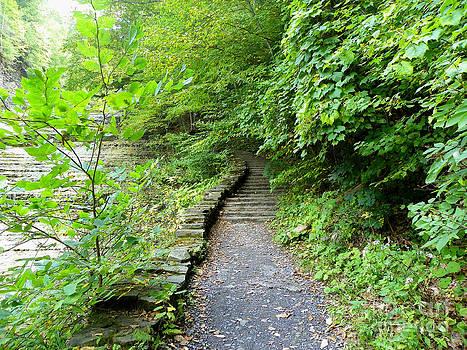 Falls Walkway by John From CNY