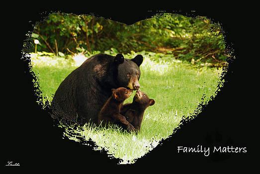 Family Matters by Lori Tambakis