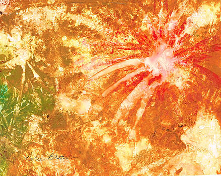 Fantastic Fireworks by Rosie Brown