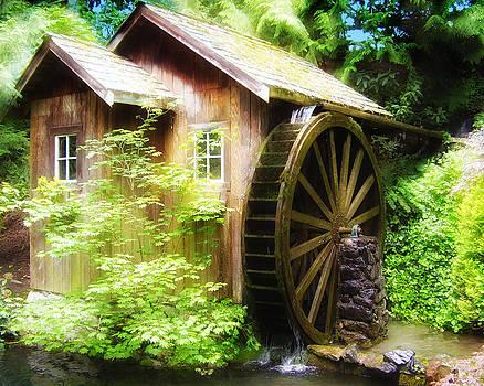 Diana Cox - Fantasy Mill