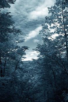 Nina Fosdick - Far Away Whispers