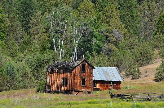 Farm House by Melissa  Maderos