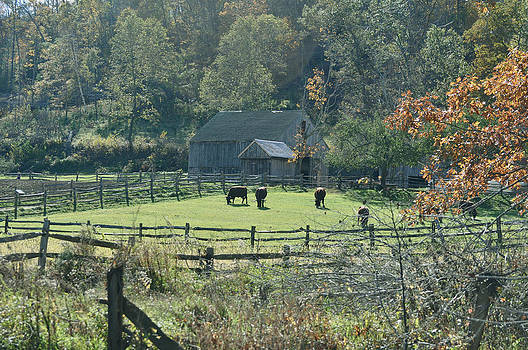Farm in autumn by Healing Woman