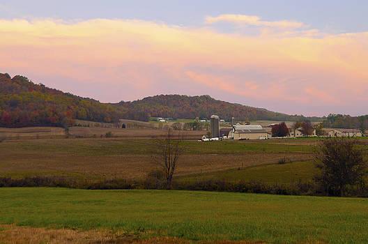 Randall Branham - Farm Scene from knoll on Rt. 41
