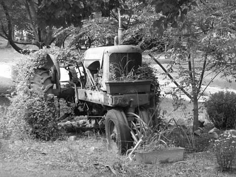 Farming by Dawn Elmore