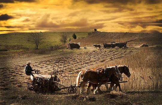 Randall Branham - Farming rain race