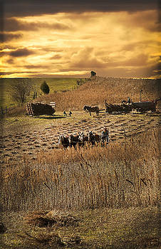 Randall Branham - Farming to beat the storm