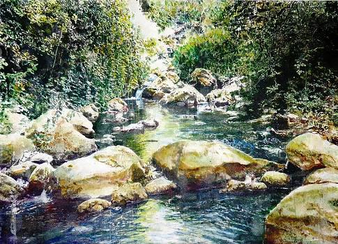 Farud falls in Gallile by Baruch Neria-Kandel