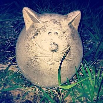 Fatcat! #cat by Orla O'Neill